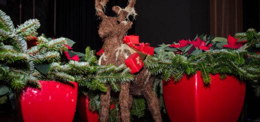 Lahntastisch listet Weihnachtsmärkte
