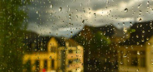 Der Unterschied:Regen und Sonne