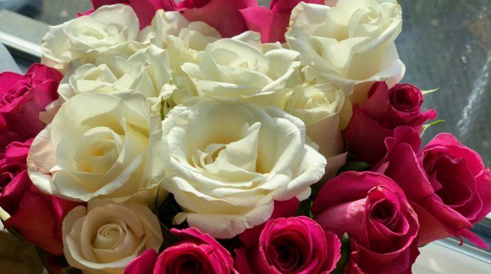 Ehrentag für alle Omas und Opas