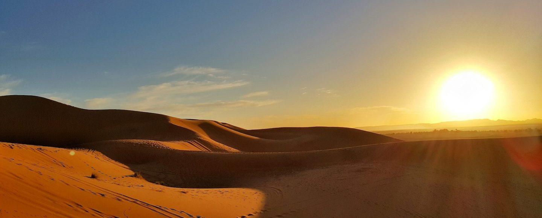Sahara Sommer