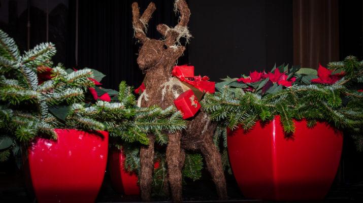 Stressfaktoren zu Weihnachten