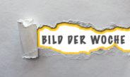 190309 BILD DER WOCHE