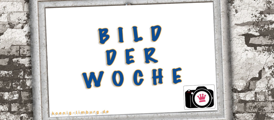 BILD DER WOCHE